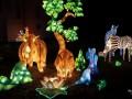 Le festival des lumières célestes à Selles sur Cher le 18 janvier 2020