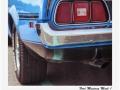 Mustang_0857